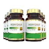 BodyFokus SynBiotik Vital Aktiv - Starker Partner für Ihren Darm - 6 Dosen